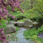 Plätscherndes Wasser im japanischen Garten schafft eine entspannte Atmosphäre