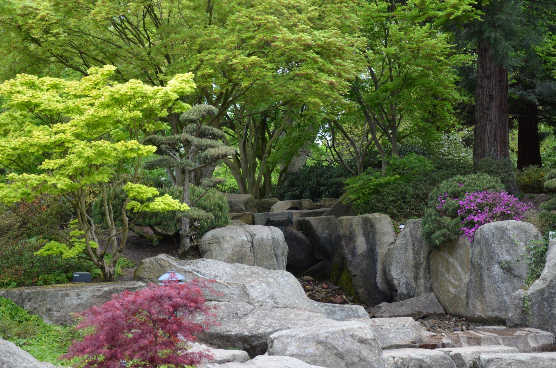 Steinanordnungen im japanischen Garten, die den Blick in die Ferne lenken